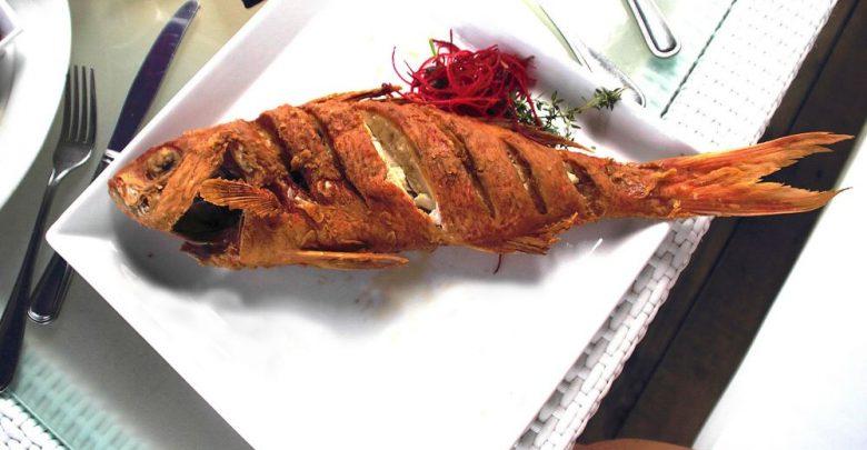 سمكة مقلية تعود للحياة في أحد المطاعم..فيديو