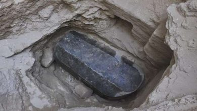 صورة فتح تابوت الإسكندرية والعثور على شئ عجيب بداخله.. والأعلى للآثار يفجر مفاجأة