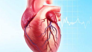 صورة أهم المعلومات عن مرض القلب لدي الشباب وأسباب الاصابة به
