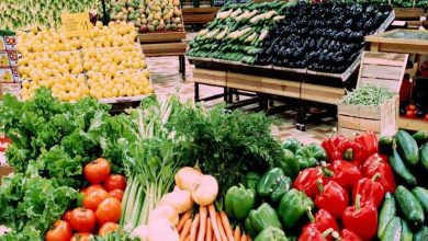 صورة ننشر أسعار الخضروات والفاكهة بسوق العبور اليوم