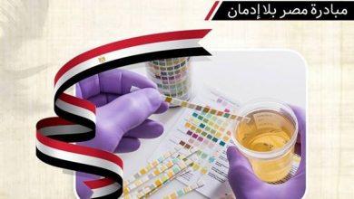 صورة مبادرة «مصر بلا إدمان» تستهدف طلاب الجامعات والموظفين والسيدات